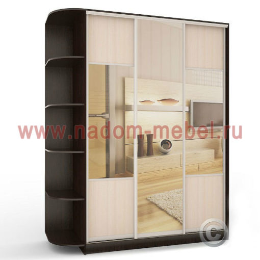 Экспрессо-12 с зеркалами шкаф купе