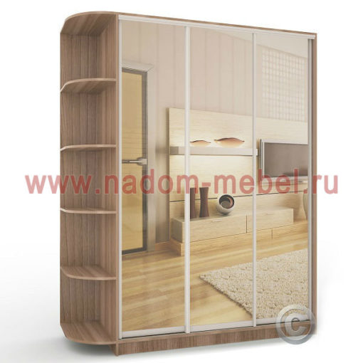 Экспрессо-9 с зеркалами шкаф купе