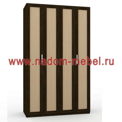 Гармошка-2Д шкаф
