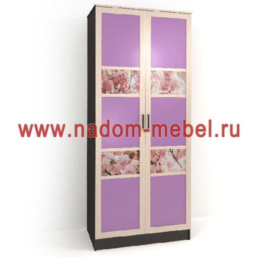 Стайл люкс ДФ2-6 шкаф